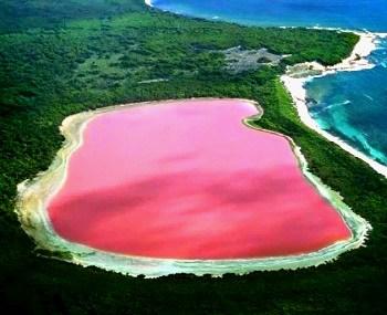 lago-rosa-australia