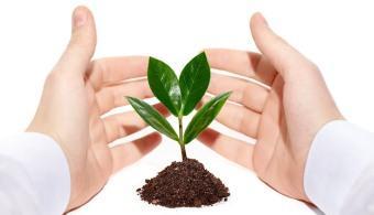 como-fertilizar-sin-contaminar-la-tierra-universia-espana