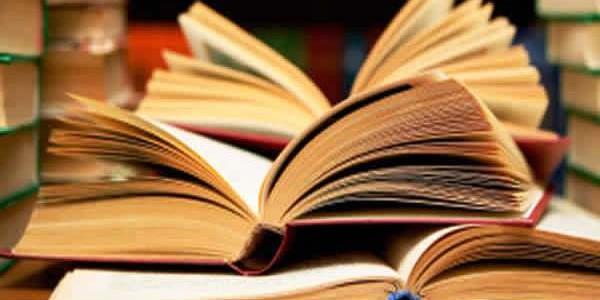 38230-libros-de-viajes-600x300