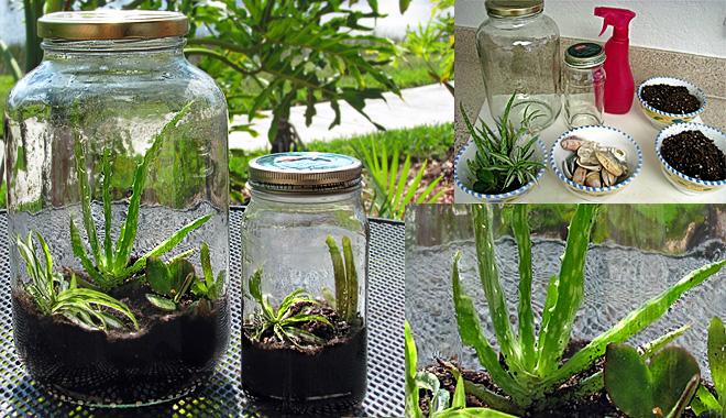 Ideas creativas para reciclar vidrio usos del vidrio for Decoracion jardin reciclado