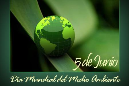 mediodia-mundial-medio-ambiente-2013