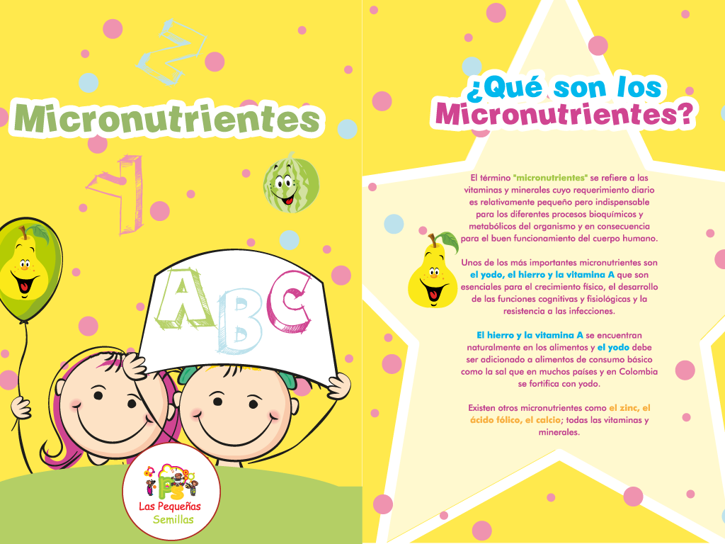 micronutrientes_big