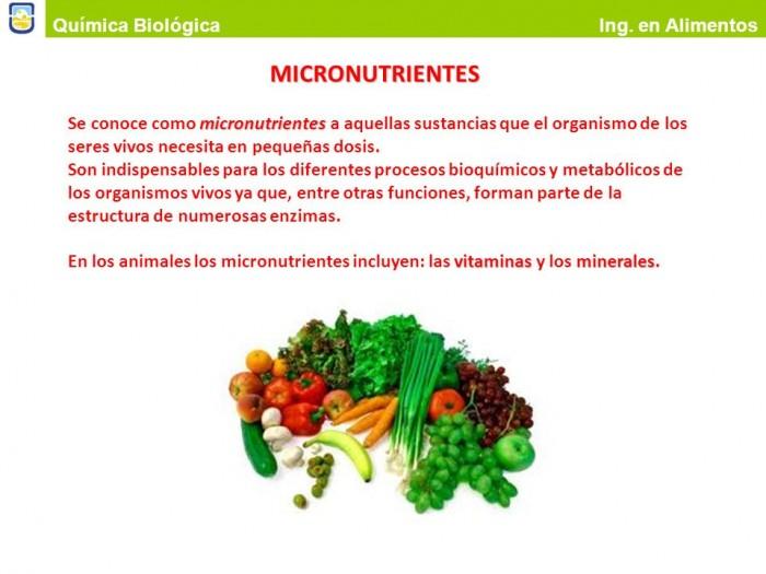 microslide_19