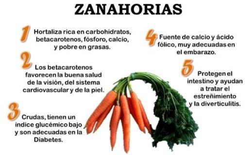 zanahorias-propiedades