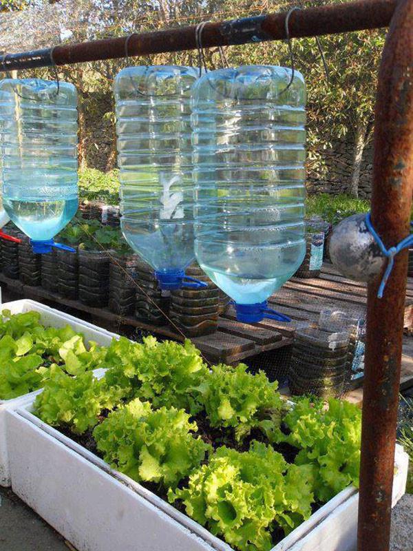 Ideas ecol gicas para juntar agua de lluvia uso del agua for Sistema de riego jardin vertical