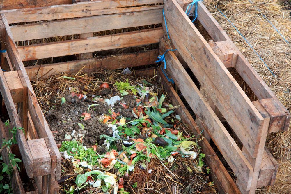 compost o abono orgnico