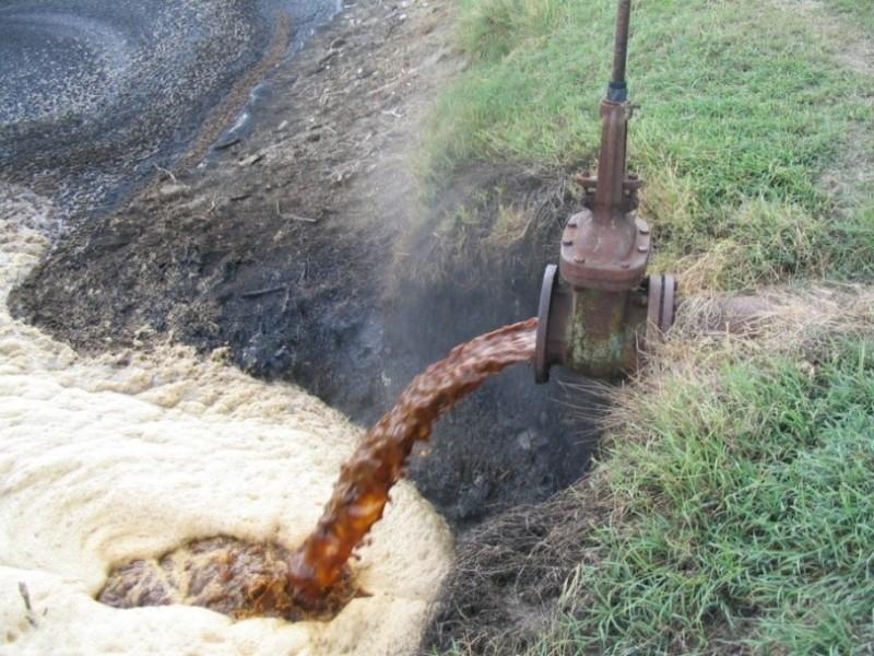 contaminacion-biologico1