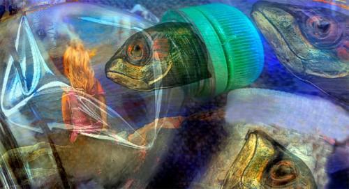 Estad sticas mundiales sobre la contaminaci n en el oc ano for Estanques plasticos para peces