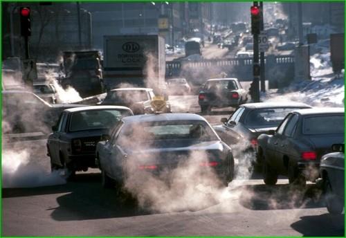 contaminacion-ambiental-efectos-seres-vivos_image011
