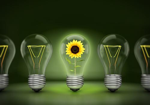 eficiencia y conservacion de energia en el hogar imagen de flor en bombilla