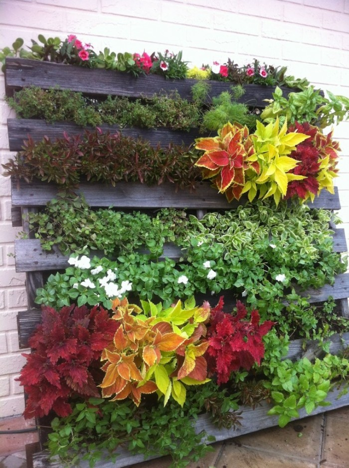 jardin-vertical-ideas-palets-pared-interesante-plantas
