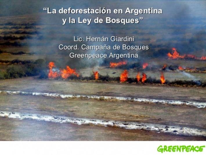 la-deforestacin-en-argentina-y-la-ley-de-bosques-1-728