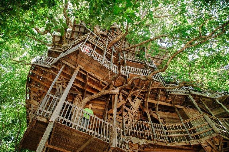 gran casa en un arbol con madera reciclada 8