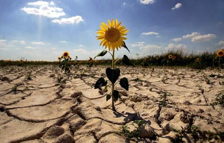 las-actitudes-de-las-personas-frente-al-cambio-climatico