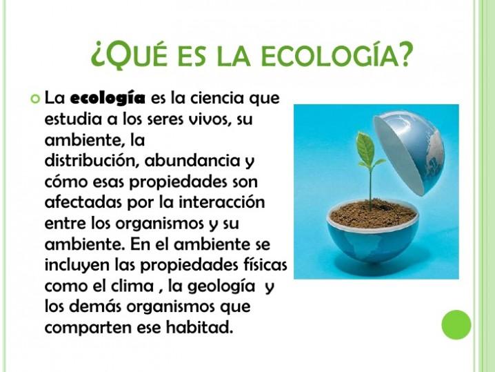 ecologa-2-728