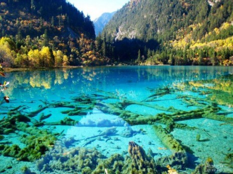 5.-Lago-cristalino-Turquoise-Jiuzhaigou-National-Park-China.-600x450