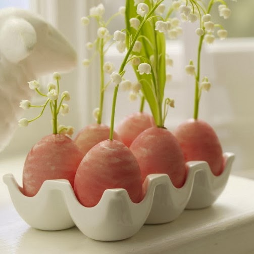 maplescetas de huevos