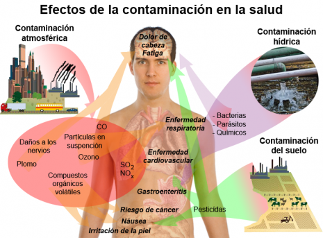 Health_effects_of_pollution-es