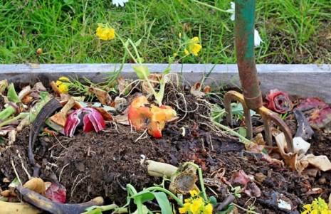 compost-preparacion