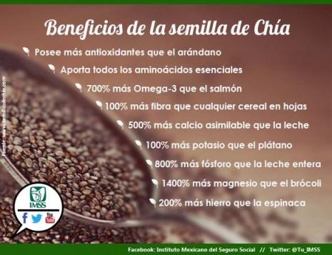 Nutricion-dietas-beneficios-de-la-chia