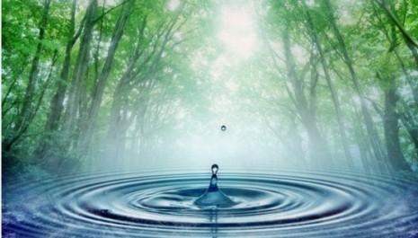 reflexiones-agua-550x314