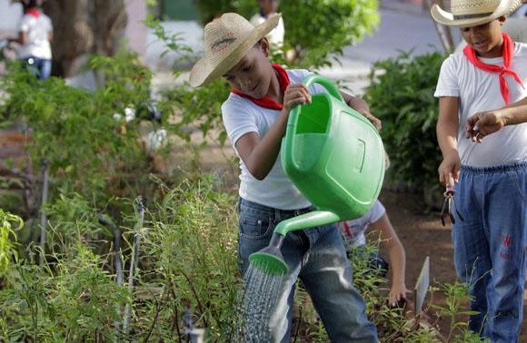 Regando las plantas del huerto. Foto: Ismael Francisco/Cubadebate