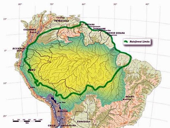 amazonia2