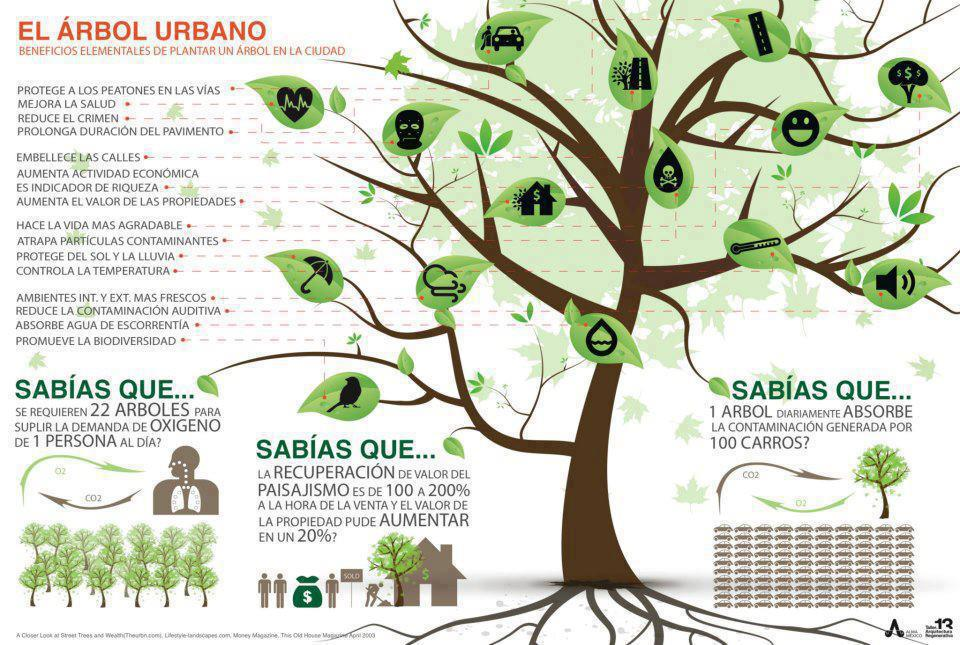 arboles-ciudades-infografia