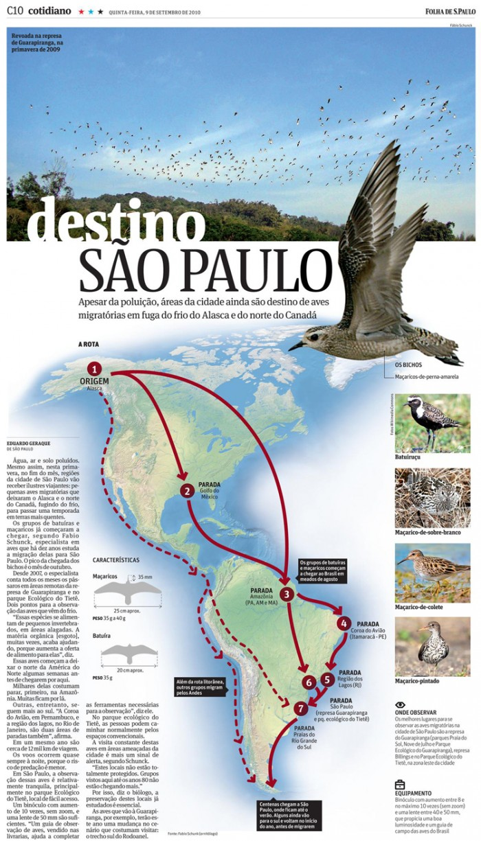 avesmigratorias