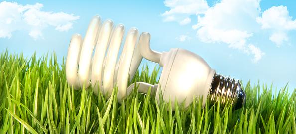 eco-friendly-light-bulb