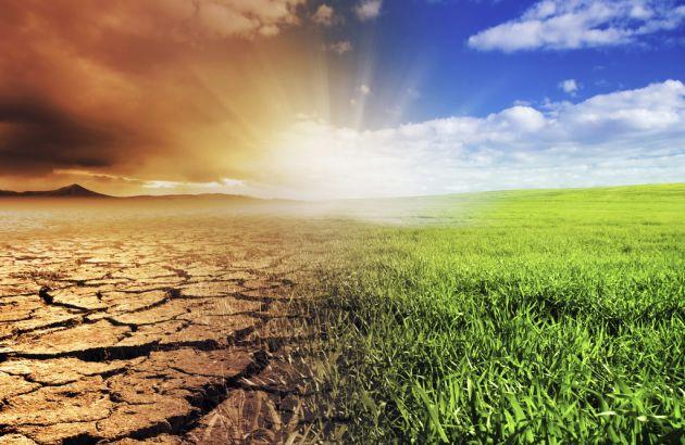 10-sorprendentes-consecuencias-del-calentamiento-global-7