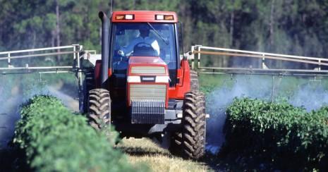 Los-pesticidas-pueden-afectar-al-feto