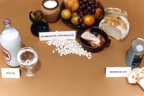 Cuáles son las diferencias entre los alimentos orgánicos e