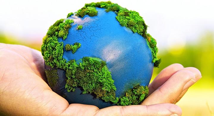 Como-colaborar-con-medio-ambiente