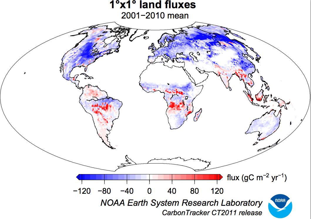 Flujo de CO2 2001-2010