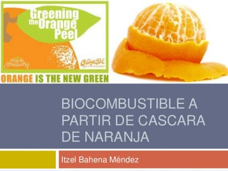 biocombustible-a-partir-de-cascara-de-naranja-1-638