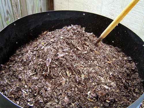 compost_maduro