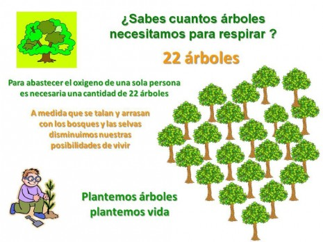 plantar[1]