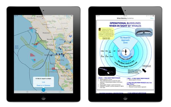 whale-app-ipad