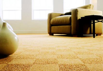como-limpiar-alfombras-en-casa-2