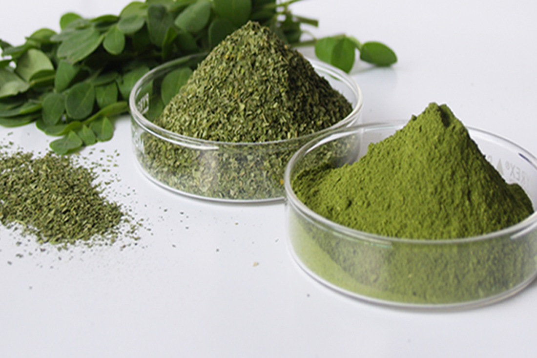 moringa-bio-oleifera-huile-poudre-the-plante-graine-diabete-cancer-antioxydant-feuille-gousse-naturel-puissant-4
