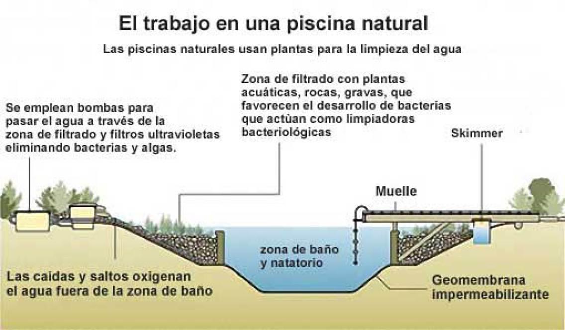 Casas ecol gicas y econ micas ideas para construir una for Como se construye una piscina de concreto