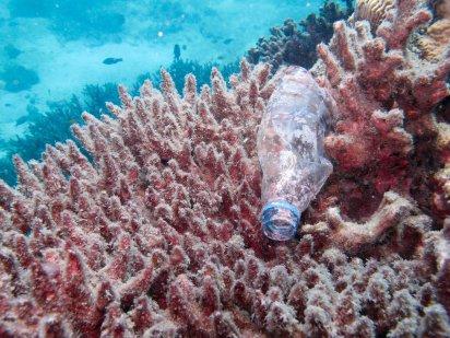 plasticos-en-el-mar