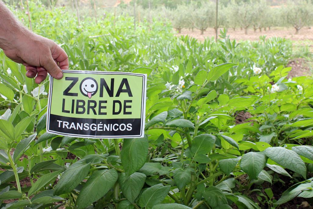 zona-libre-de-ogm4