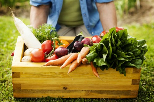 Beneficios-de-consumir-alimentos-organicos-3