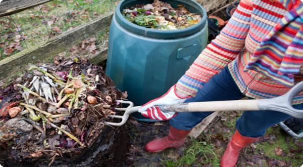 compost-como-trabajar-con-los-desechos