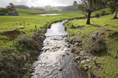 Tipos de flujos de un canal