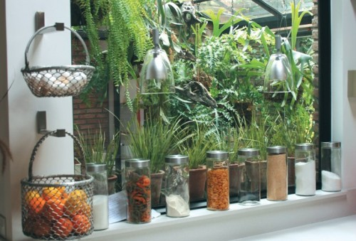 mimar-plantas