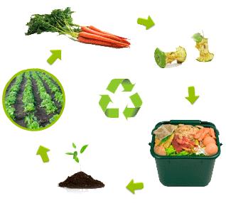 manual-de-compost-compostaje