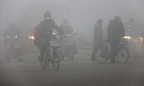 Smog fotoquimico efectos en el medio ambiente 11